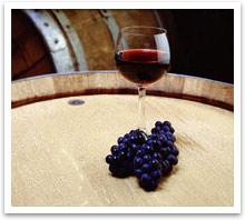 wine_glass1